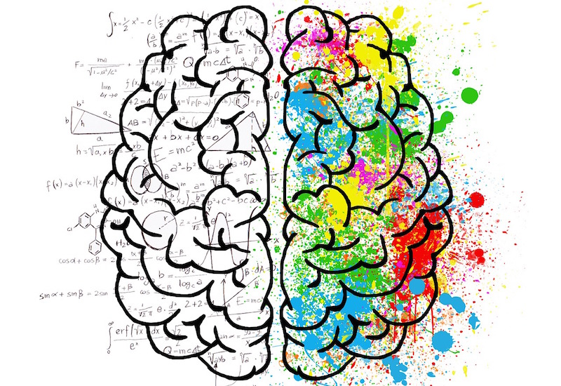 An graphic of a brain with the right hemisphere lit up by a colourful array of paint signifying creative energy